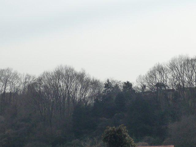 かつてのあずま屋を麓から遠望.jpg