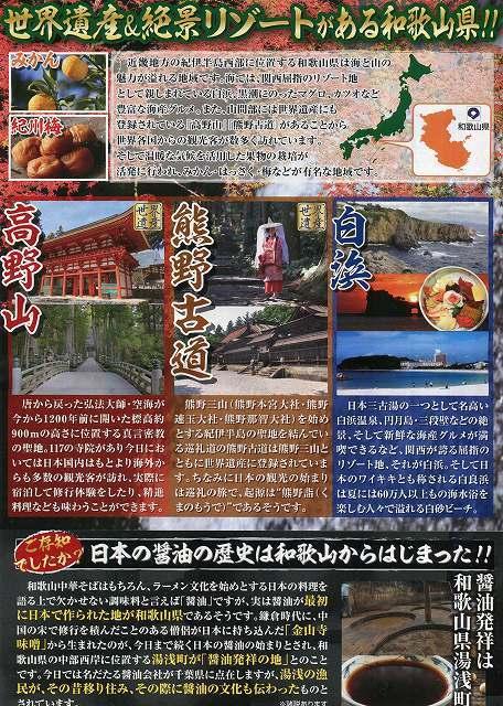 パンフ4和歌山の紹介.jpg