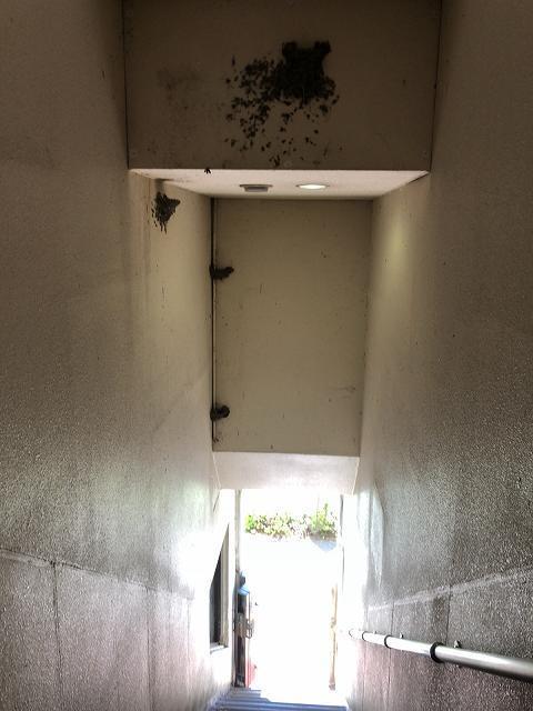 ルナ階段2.jpg