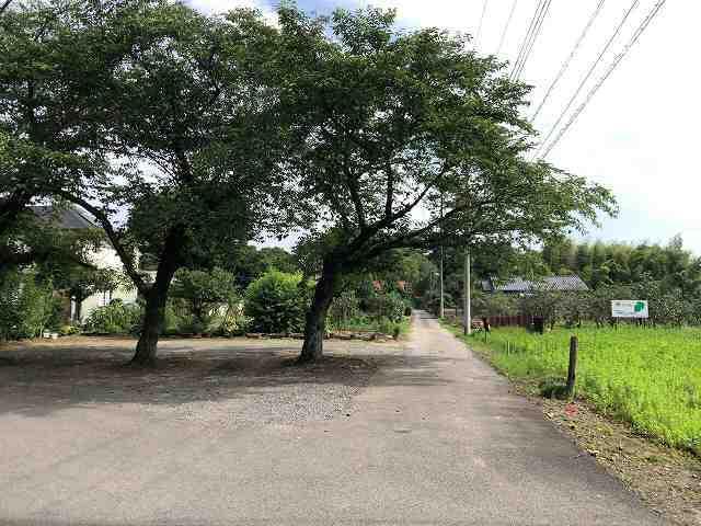 公園を背後に1.jpg