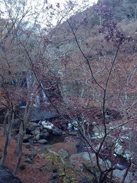 初冬の風景1.jpg