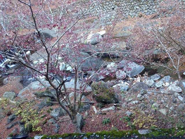 初冬の風景2.jpg