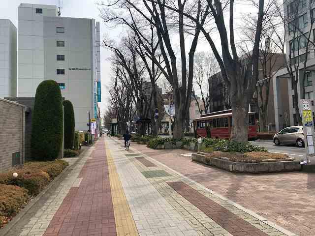 前橋4けやき通り4.jpg