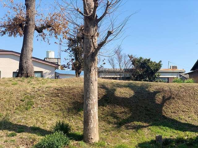 土塁10墓地を廻って塀越しに6ズーム2.jpg