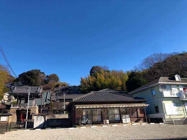 城山遠望1.jpg