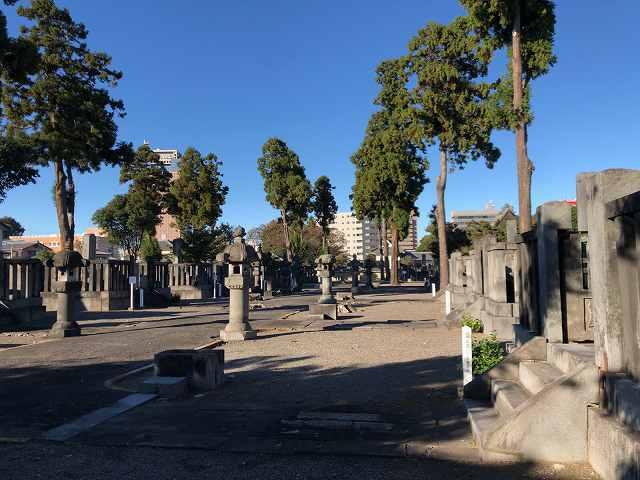 墓地14.jpg
