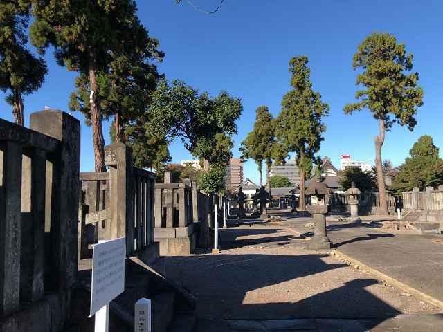 墓地15.jpg
