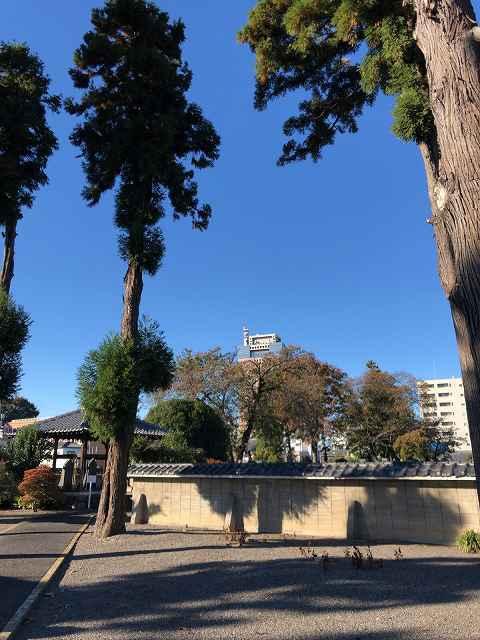 墓地9初代と県庁遠望.jpg