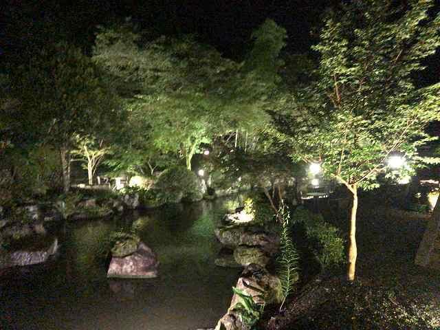 夜18池1.jpg