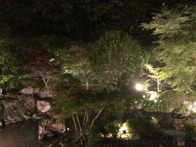 夜19池2.jpg