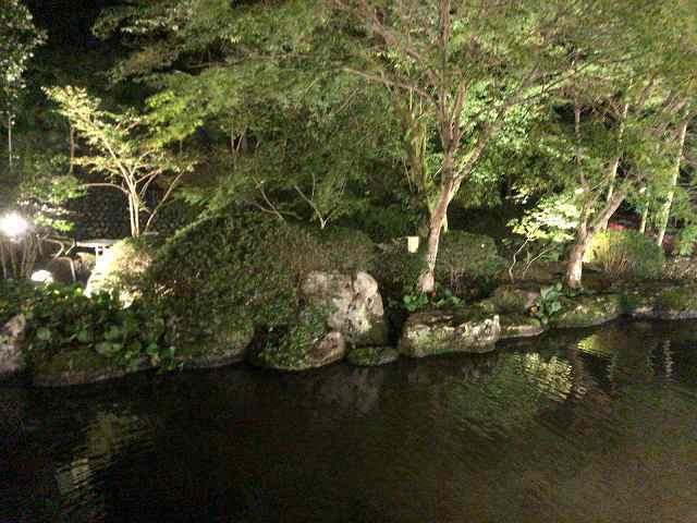 夜22池5.jpg