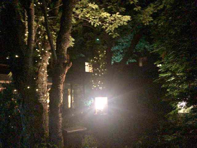 夜25.jpg