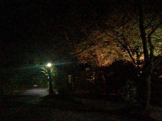 夜26.jpg