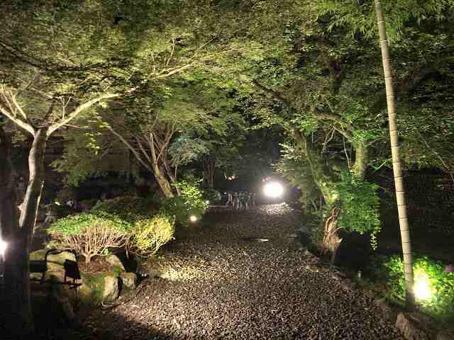 夜4庭2.jpg