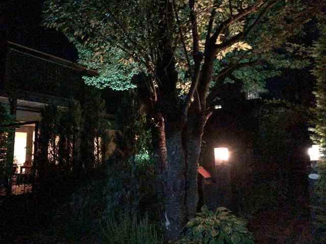 夜55.jpg