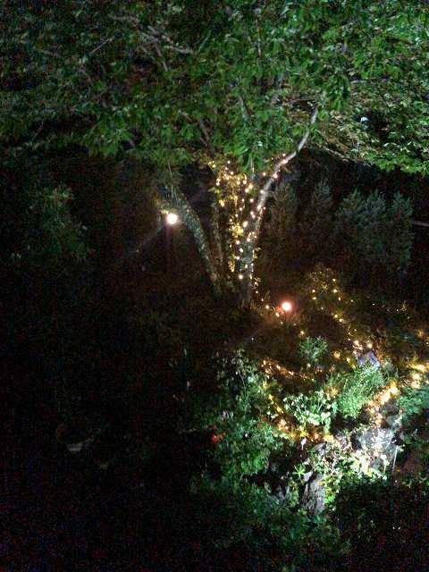 夜61.jpg