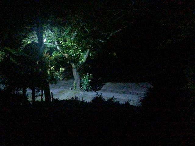 夜76.jpg