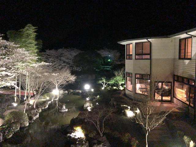 夜の庭2.jpg