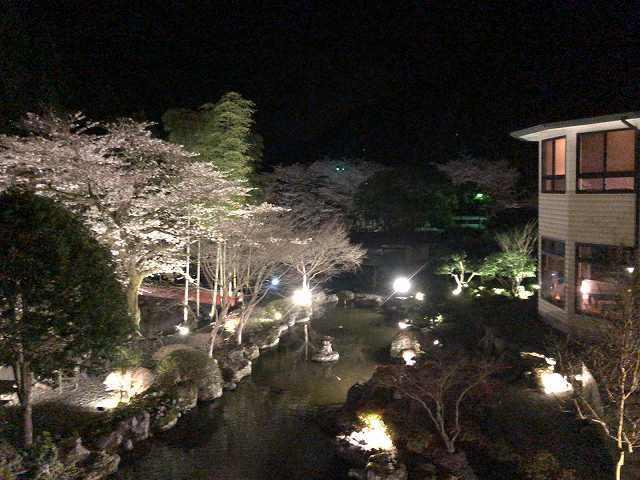 夜の庭3.jpg