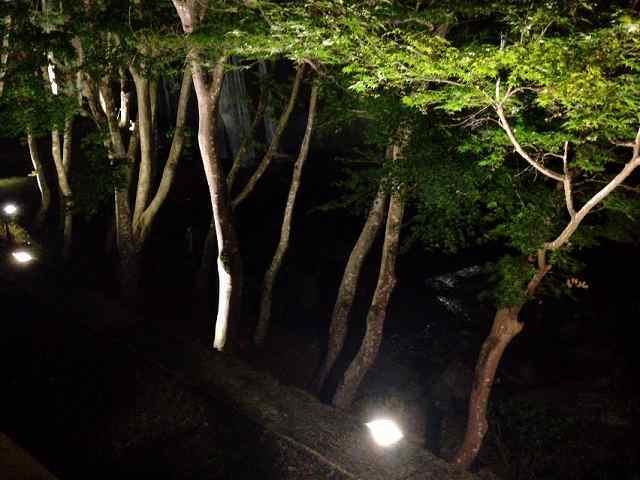 夜の渓流露天2.jpg