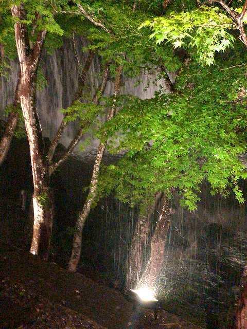 夜渓流3.jpg