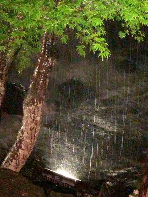 夜渓流6.jpg