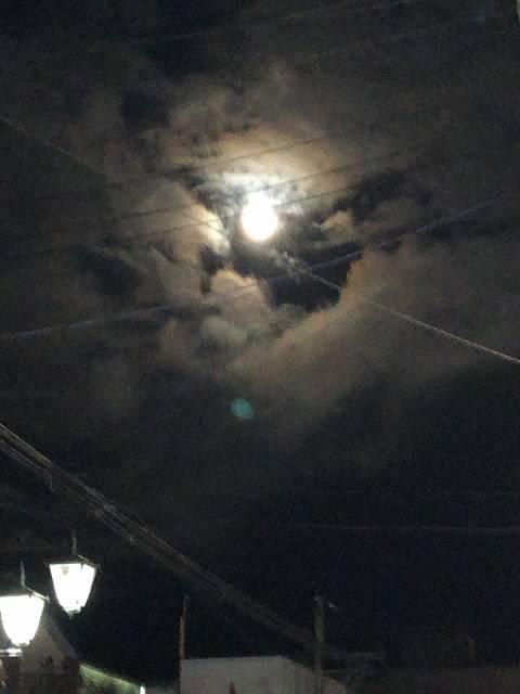 夜道2朧月.jpg