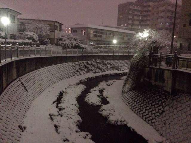 大岡川1.jpg