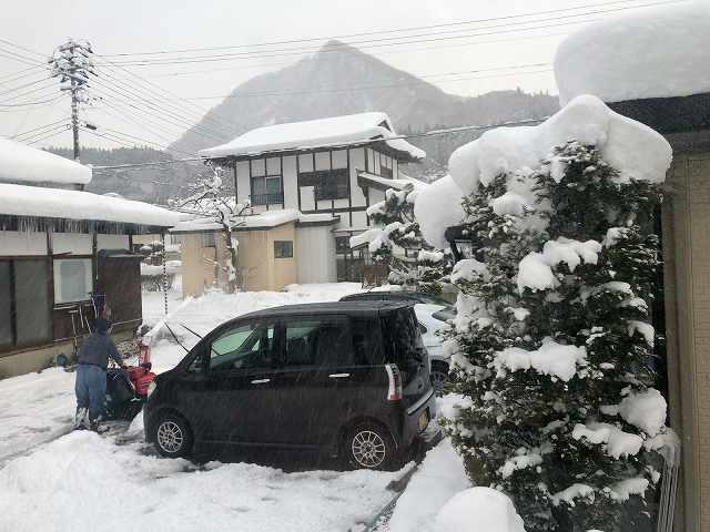 大旦那が雪かき3.jpg