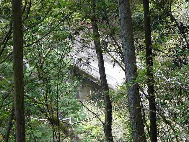 大森橋が見える.jpg