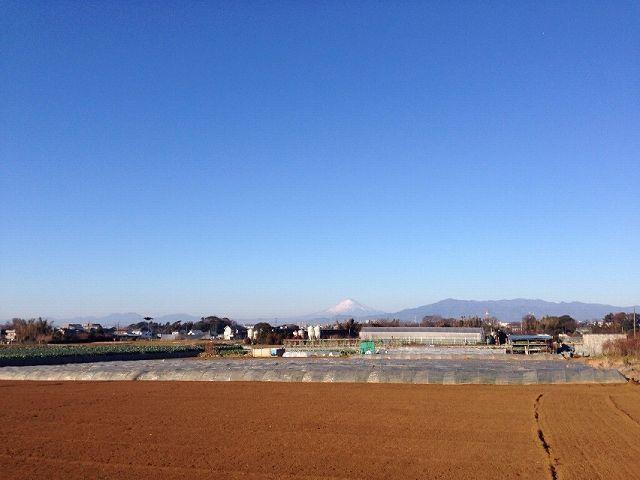 富士1.jpg