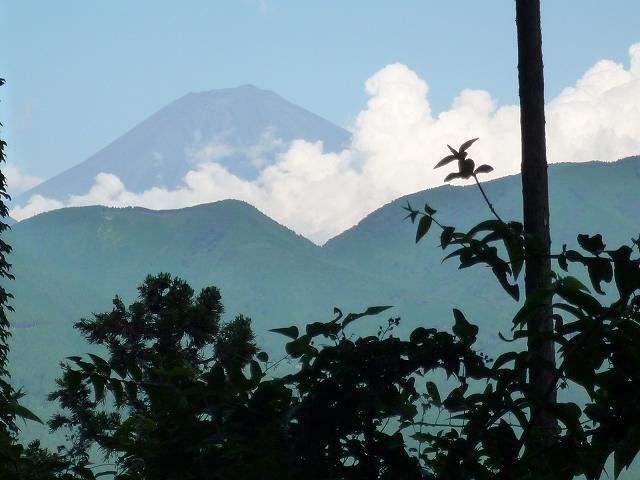 富士山のビューポイント.jpg