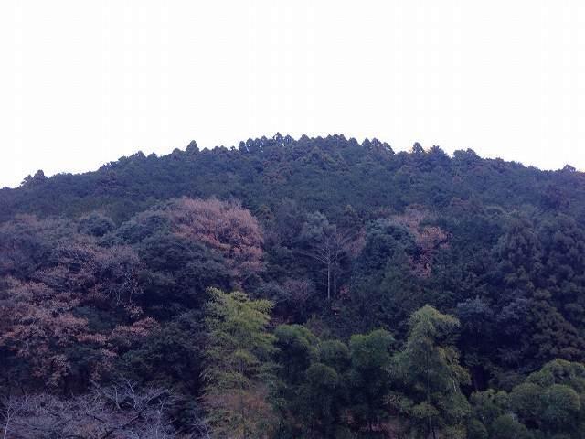 対岸の山.jpg