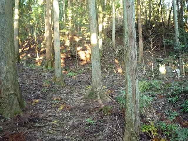 山の神2010年11.jpg