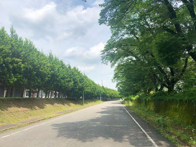 工場地帯3右が城域.jpg