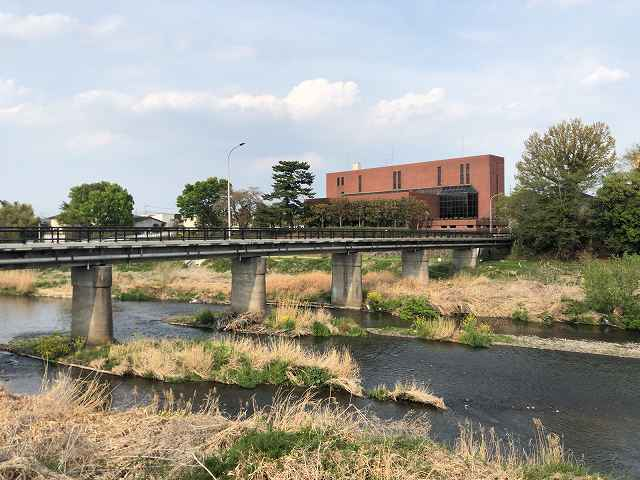 広瀬川5.jpg