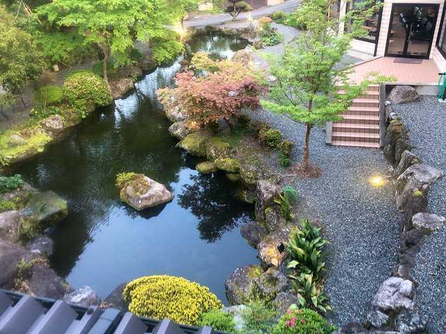 庭と池を見下ろす角度がいつもと少し違う.jpg