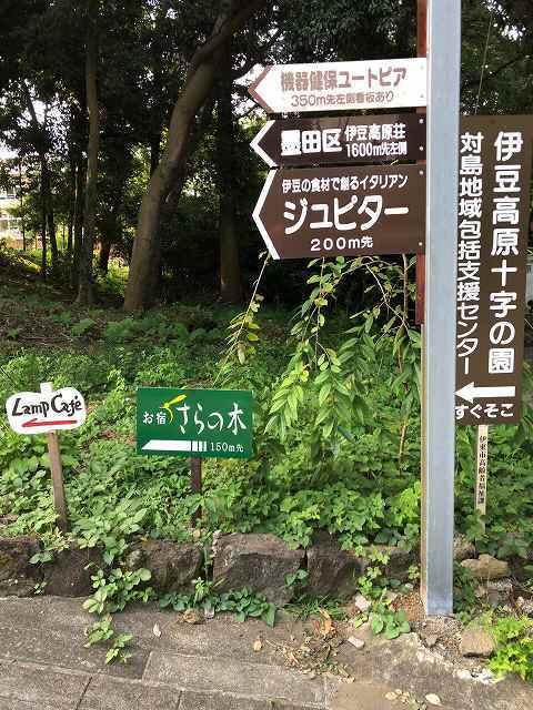 散歩3.jpg