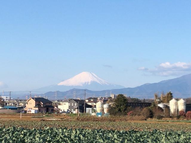新年の富士山2.jpg