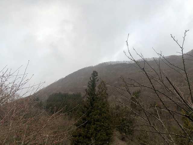 曇り空1.jpg