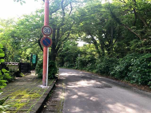 朝13散歩3.jpg