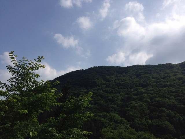 朝の又見山1.jpg