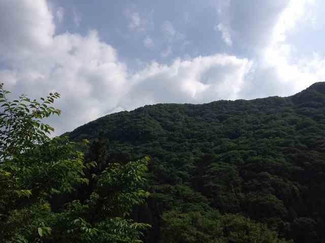 朝の又見山3.jpg