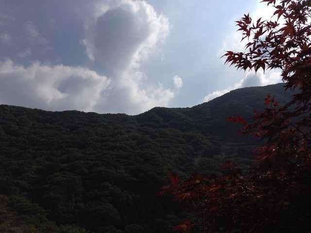 朝の又見山4.jpg
