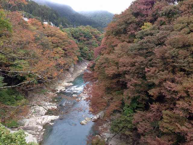 朝の大川1.jpg