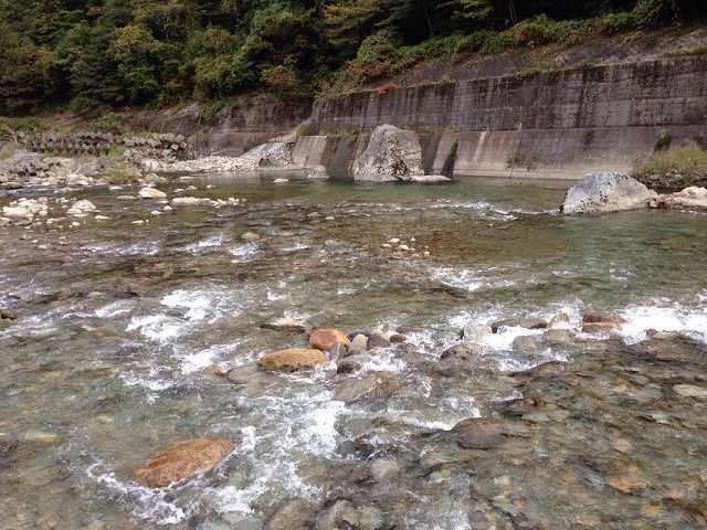 朝の大川3.jpg