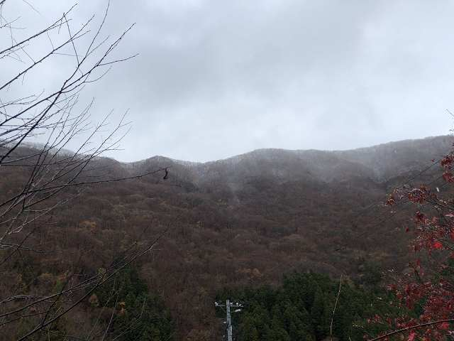 朝の山12.jpg