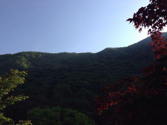 朝の山2.jpg