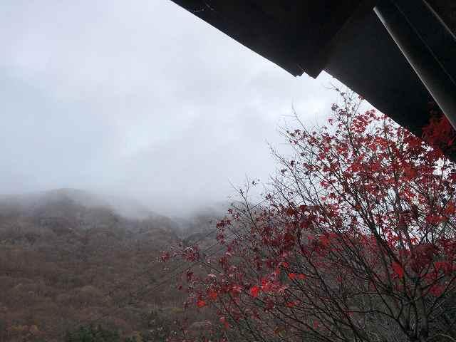朝の山3.jpg