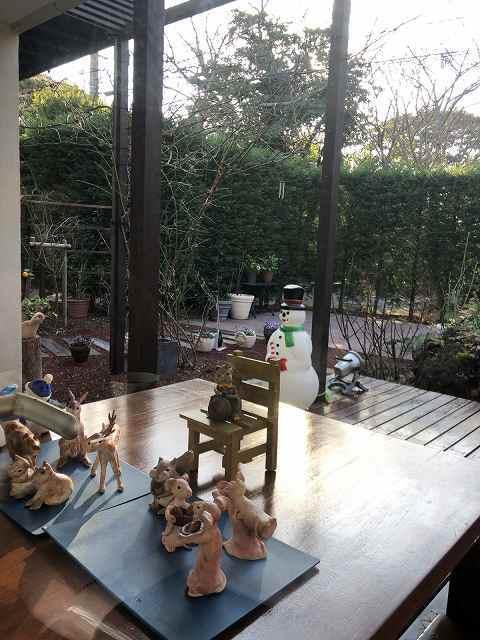朝の庭.jpg